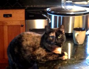"Quality-Control Officer Penelope ""Fuzzbutt"" Frank, overseeing operations in the kitchen."