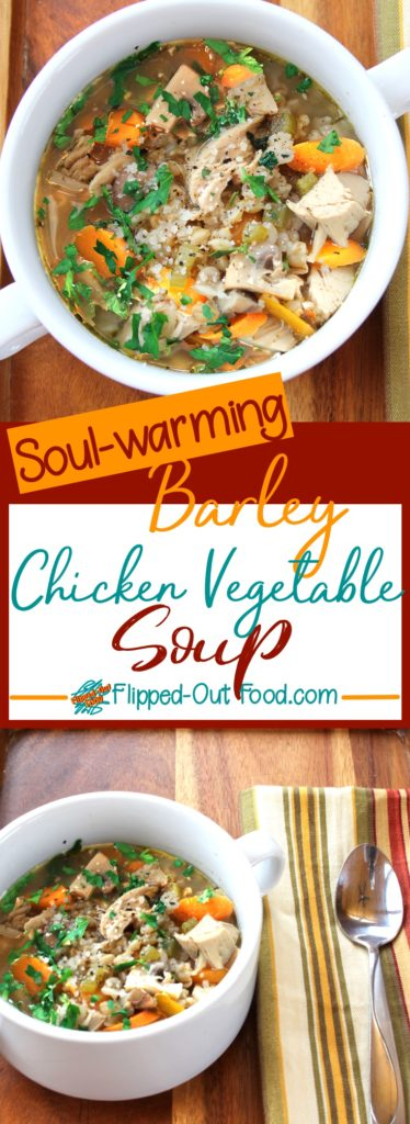barley chicken & vegetable soup pin collage
