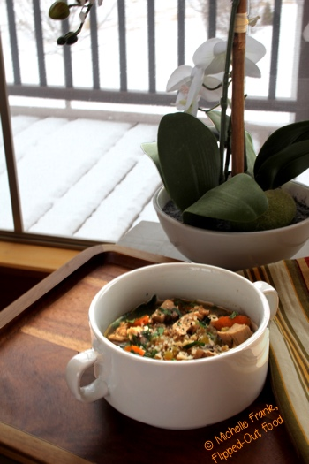 Barley Chicken-Vegetable Soup on a tray with orchid in the background and snow on the ground outside