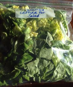 A zip-top bag of lettuce, washed and chopped, ready for Meal-Prep House Salad with HomeMade Thousand Island Dressing.