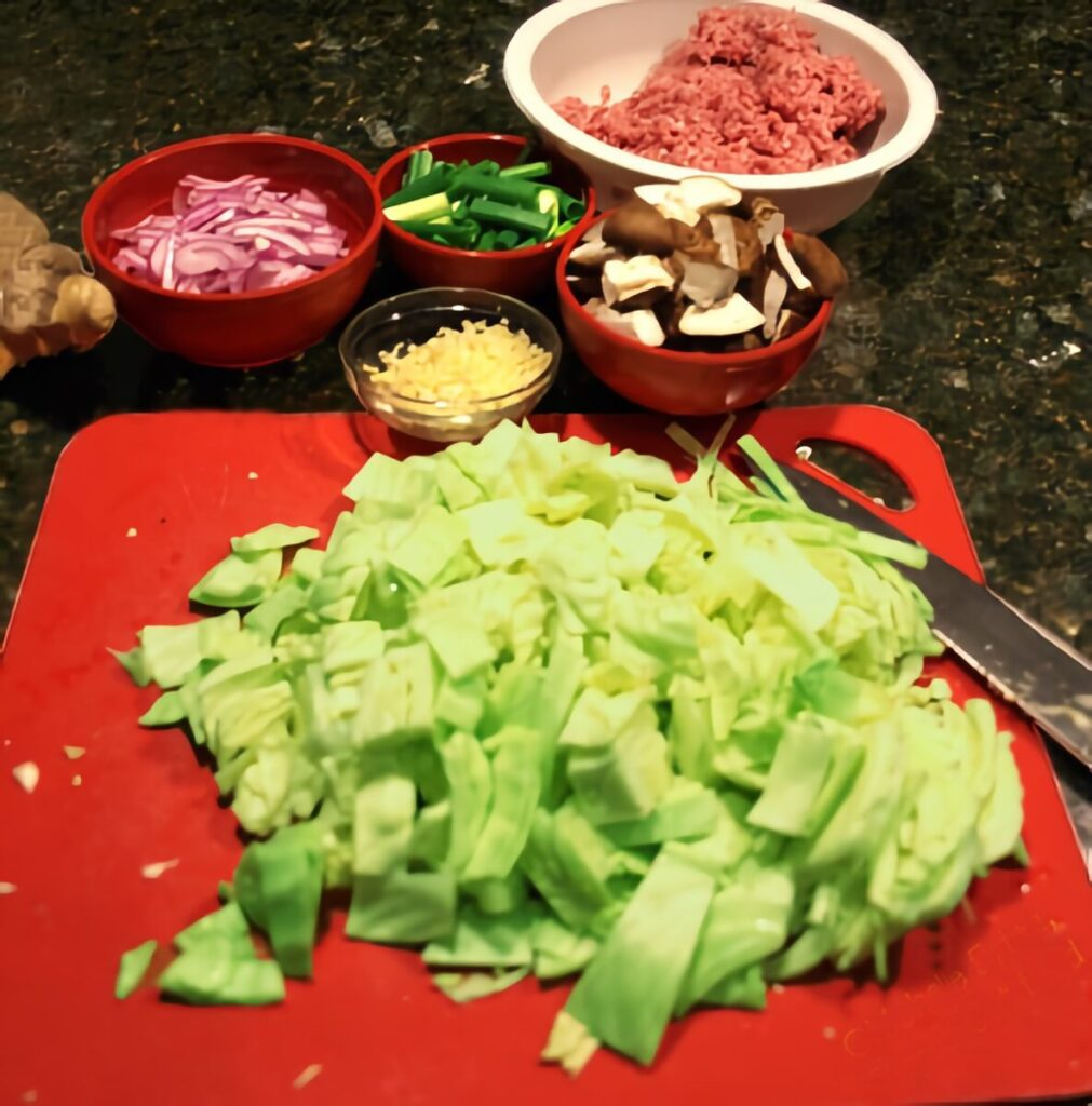 Ingredients in inside-out egg roll bowls. Cabbage, shiitake mushrooms, ginger, garlic, ground pork, scallions, red onion.