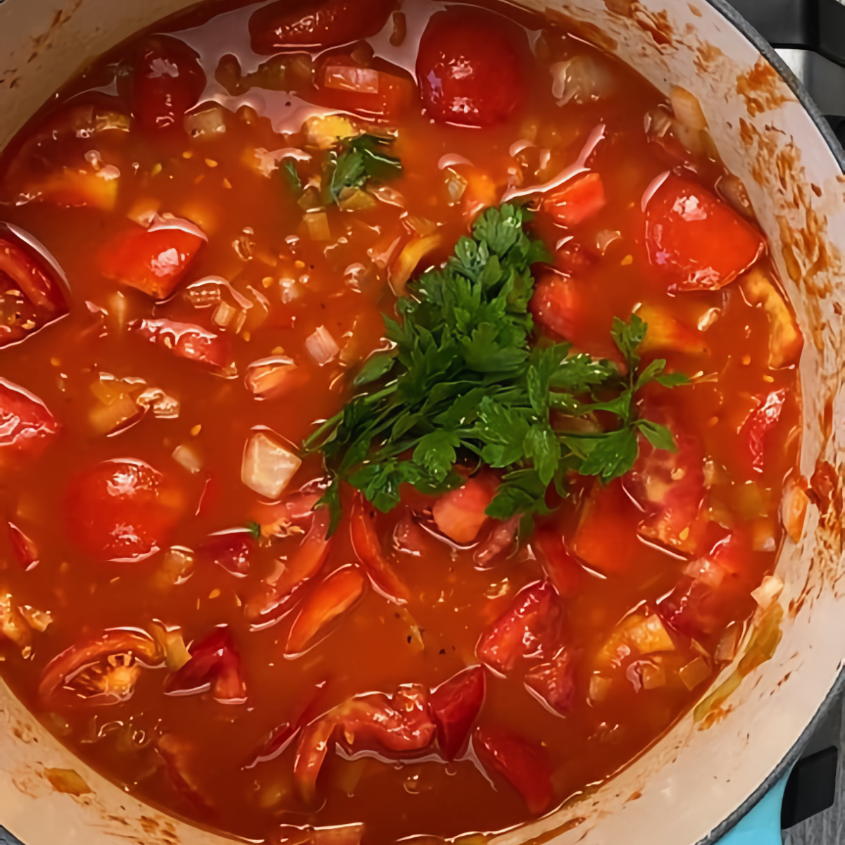Top view of Fresh Tomato Soup simmering with a sprig of fresh parsley.